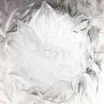 Autumn Textured Glazing