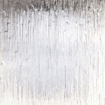 Cotswold Textured Glazing